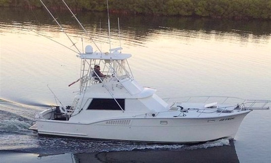 Ruskin Fishing Charter On 45' Hatteras Yacht