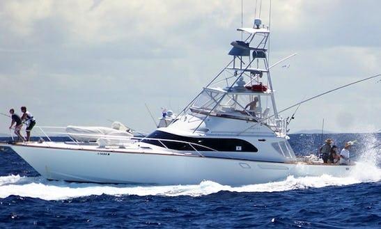 Fishing Charter In Port Douglas