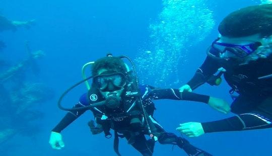 Underwater Adventure In Aqaba, Jordan