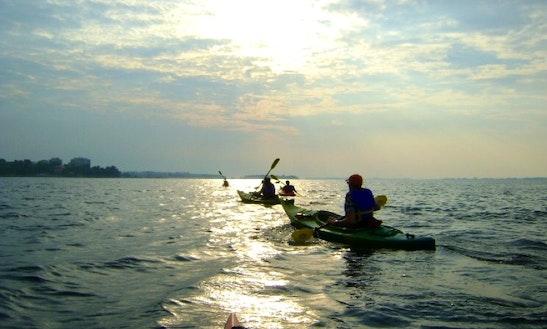 Kayak- Kingston- Ahoy Rentals