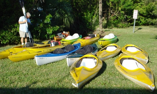 Guided Kayak Tours In Cocoa Beach