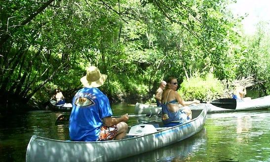 Explore Wimauma, Florida On A Canoe