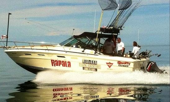 30ft Sea Ray Cuddy Cabin Boat Charter In Welland, Canada