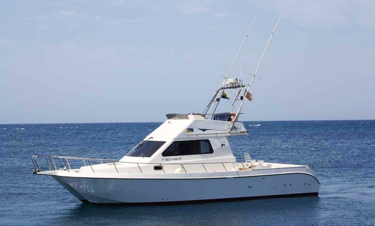 35ft Sport Fisherman Charter In Pasito Blanco, Spain