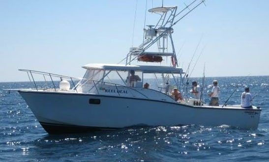 Private Deep Sea Fishing Charter In Clearwater, Florida With Captain Steve