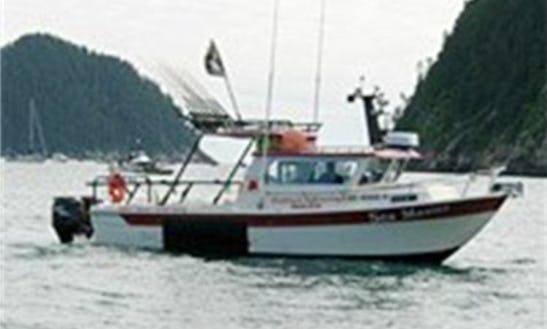 28' Cuddy Cabin Charter In Valdez, Alaska