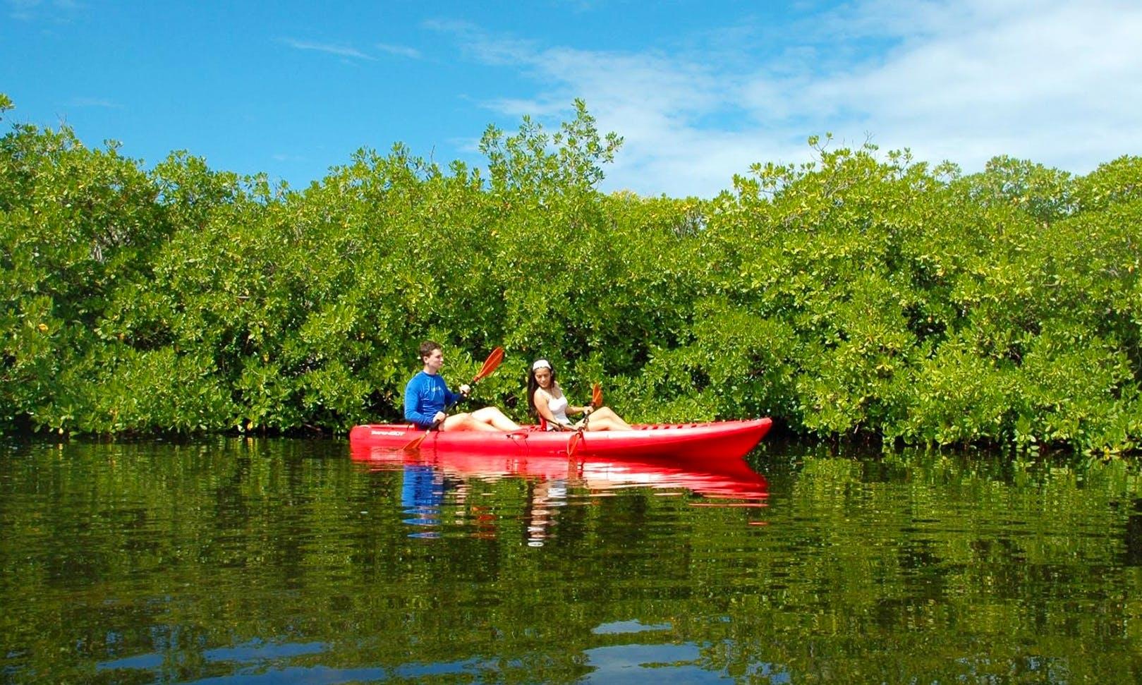 Cayman Islands Guided Kayak Adventures