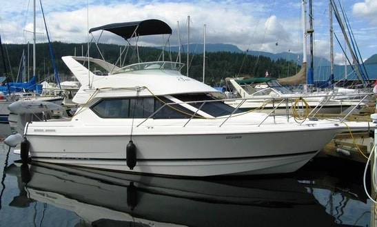 28ft Command Bayliner Ciera Salmon Boat Charter In Vancouver, British Columbia