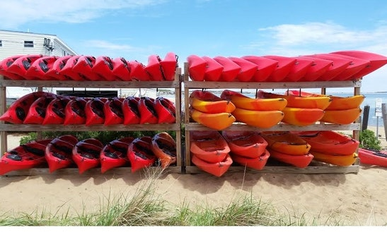 Single Sit On Top Kayak Rentals In Provincetown