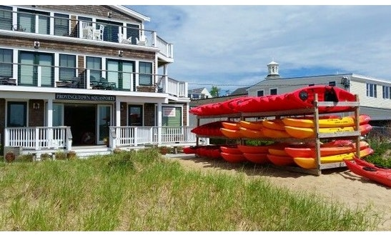 Single Sit In Kayak Rentals In Provincetown