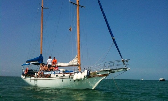 The Butterfly Classic Sailing Yacht In Tarragona