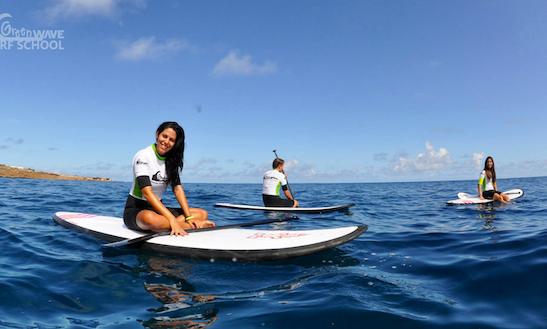 Paddleboard Rental In San Cristobal De La Laguna