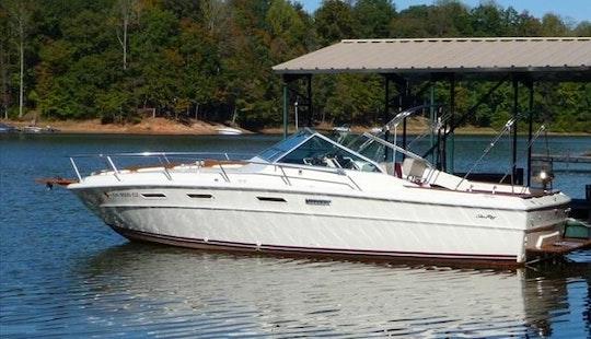 30' Sea Ray Lake Erie Fishing Charter
