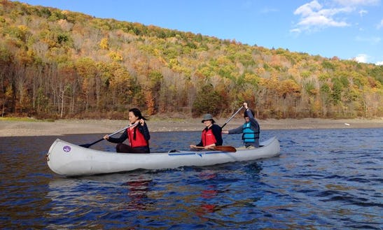 Guided Paddling Trips In Kingston