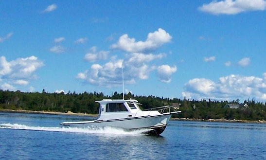 26' Trawler Tour In Milbridge, Maine