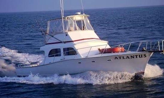 44ft Sportfisherman Boat Charter In Dennis, New Jersey