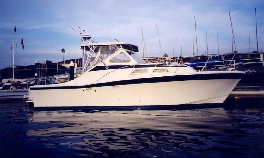 "28ft ""Dom Perignon"" Sportfisherman Boat Charter In Everett, Washington"