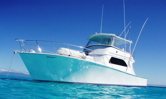 Private Charter Boat In Cairns