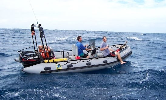 Diving Trips And Courses In Bali, Indonesia