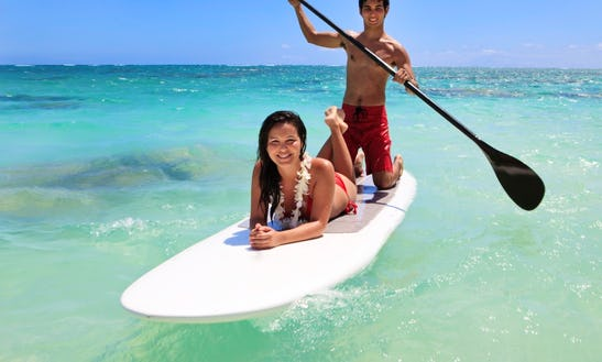 Half Day To Full Day Paddleboard Rental In Islamorada, Florida
