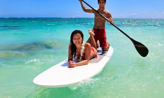Half Day To Full Day Paddleboard Rental In Islamorada, Florida