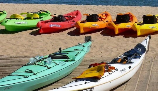 Rent Sit On Top Kayaks In Provincetown
