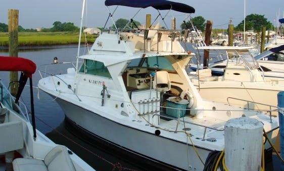 "29ft ""Margaree Lady"" Scottie Craft Sportfisherman Yacht Charter in Dennis, Massachusetts"
