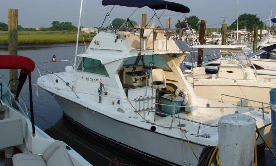"29ft ""Margaree Lady"" Scottie Craft Sportfisherman Yacht Charter in Dennis, Massachusetts"