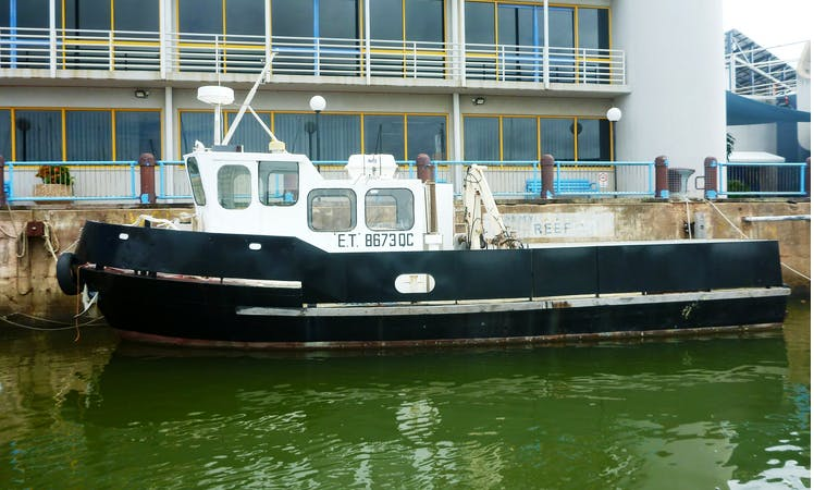 Diving Excursions aboard the 39' ET Tug Boat Charter in Townsville City, Australia