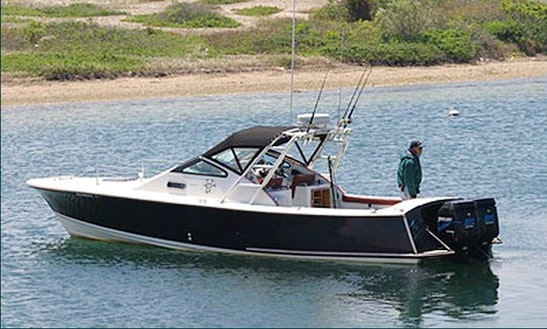 30' Sport Fisherman Charter In Aquinnah, Massachusetts
