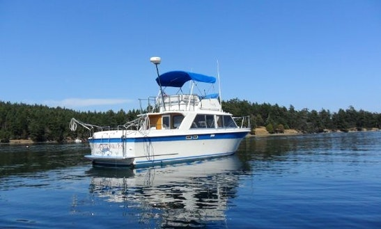 31ft Sport Sedan Trawler Boat Fishing Charter In Victoria, British Columbia