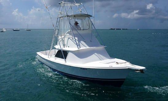 Luxury Fishing  Charter 'sun King' In Costa Rica
