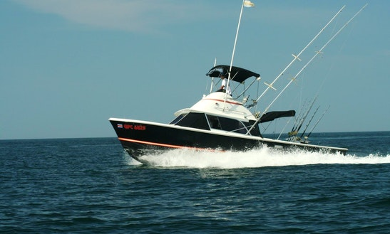 Bertram 31' Sport Fisherman Charter In Playa Carrillo, Costa Rica