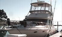 Motor Yacht Charter in Northport
