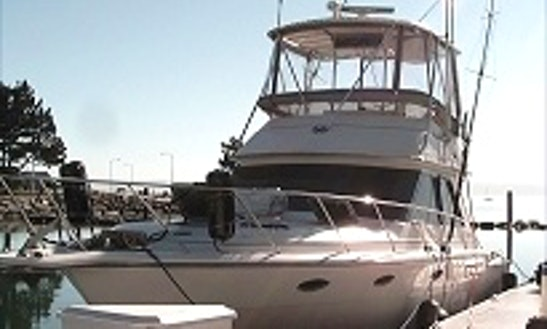 Motor Yacht Rental In Northport