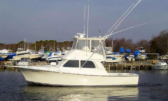 38' Henriques Fishing Charter In Acworth
