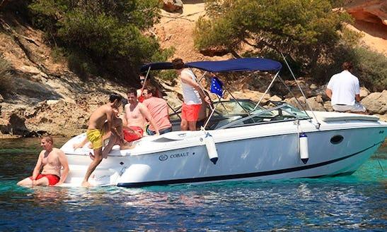 Luxury ''cobalt 255'' Cuddy Cabin Charter In Spain