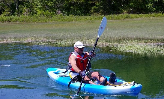 2-hour Historic Guided Single Kayak Tour On Sandwich Harbor, Massachusetts