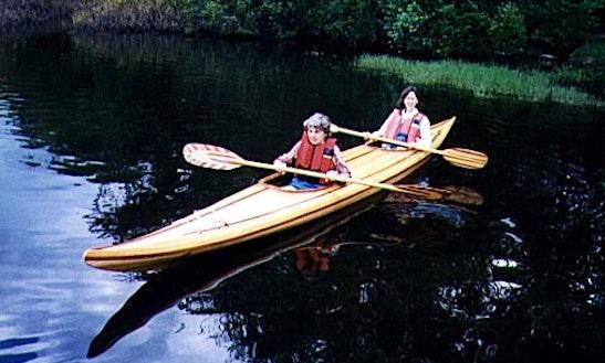 'night Safari' Kayak Trip In Russell