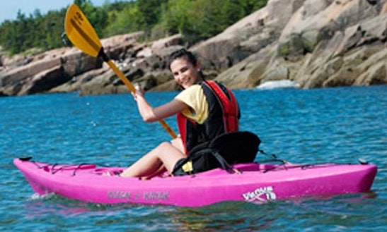 'twilight Safari' Kayak Trip In Russell