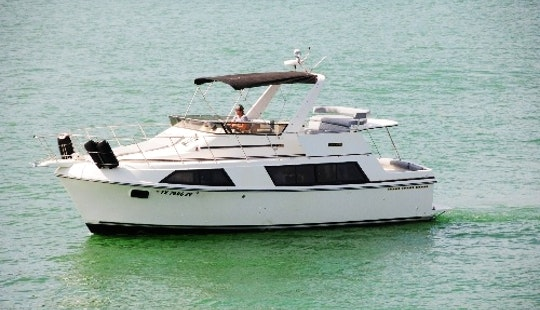 Yacht Charter 'carver Yacht' In Austin