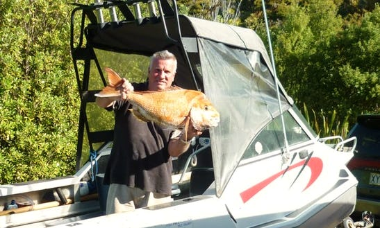 Cuddy Cabin Fishing Charter In Tryphena, New Zeland