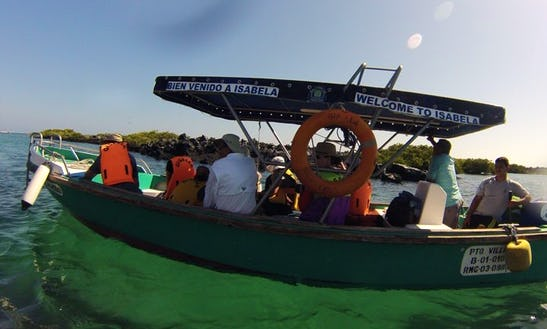 Excursion - Dive Boat In Puerto Ayora