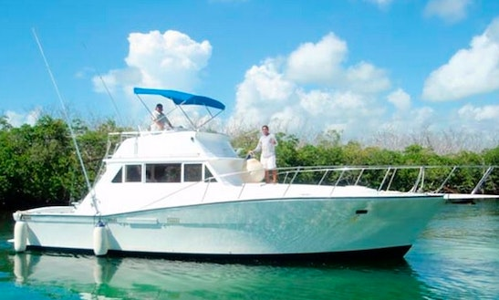 Sportfishing Charter On 41' Viking In Cancun, Mexico