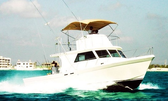 46' Defender Fishing Charter In Cancun, Mexico