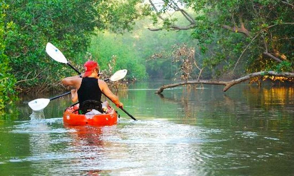 Description Of A Kayak Tour Guide
