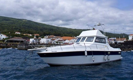 36' Double Marlin Yacht Charter In Portugal