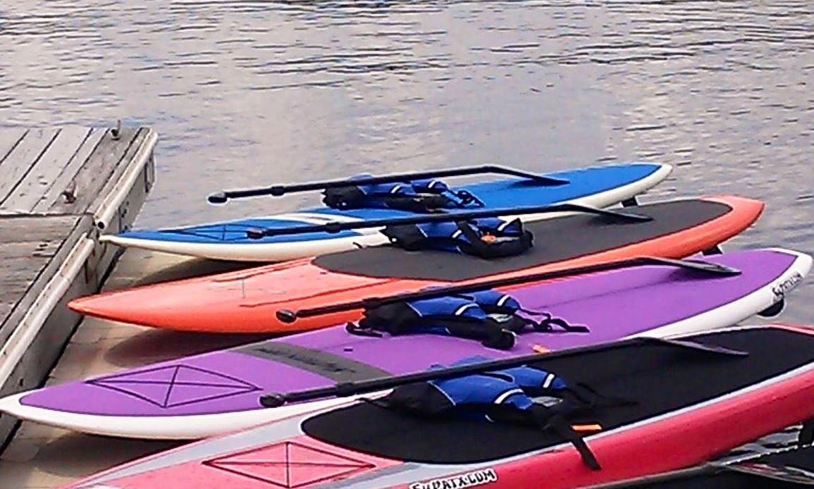Guided Stand Up Paddle Up Tour In Annapolis