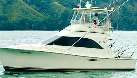 Luxury Fishing Charter In Los Suenos