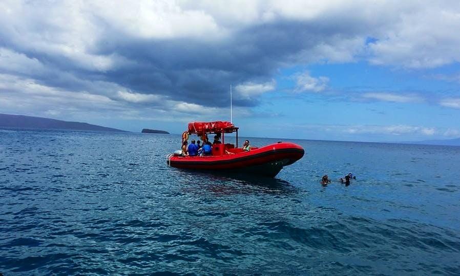 35' Whale Watching Tour Boat In Kihei